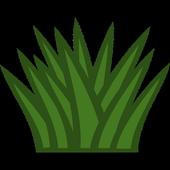 Perennial herbs icon