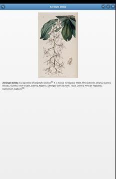 Perennial herbs apk screenshot