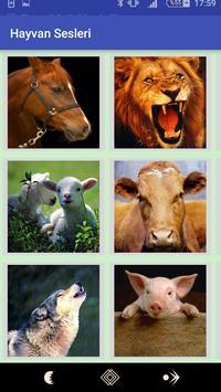 Animals Voices 2018 apk screenshot