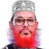 saidy bangla waz সাঈদীর ওয়াজ icon