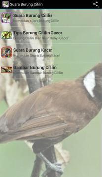 Kumpulan Suara Burung Cililin poster