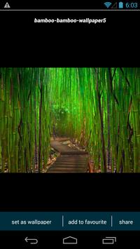 Bamboo Forest HD Wallpapers poster