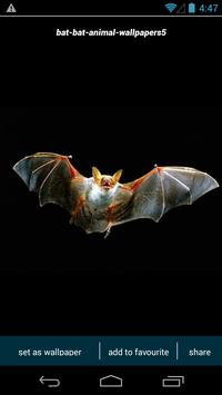 Bat HD Wallpapers apk screenshot
