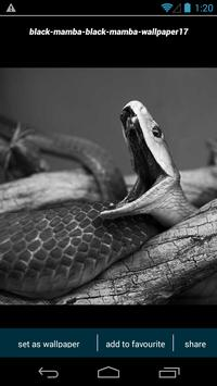 Black Mamba Snake Wallpapers Poster Apk Screenshot