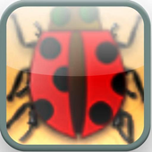 Insect Finger Kill Game icon