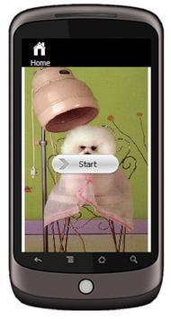 Dog Grooming apk screenshot