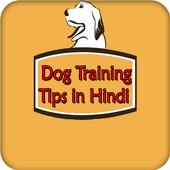 Dog Training Tips in Hindi icon