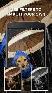 Dog Wallpapers screenshot 3