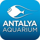Antalya Aquarium icon