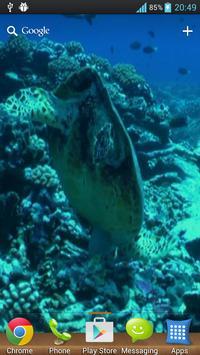 Wonderful Aquarium LWP screenshot 1