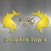 Dolphin Top4 icon