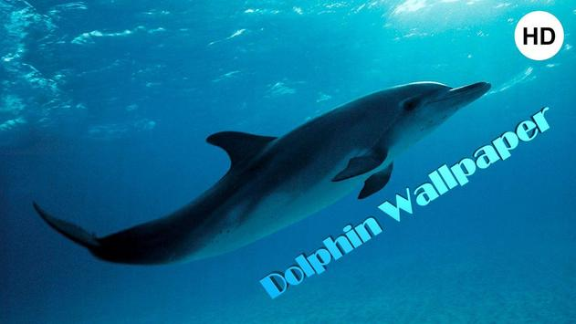Dolphin wallpaper hd apk download free lifestyle app for android dolphin wallpaper hd poster voltagebd Gallery