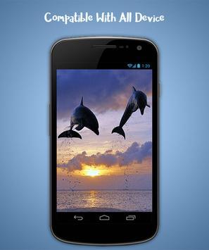 Dolphin Live Wallpaper screenshot 3