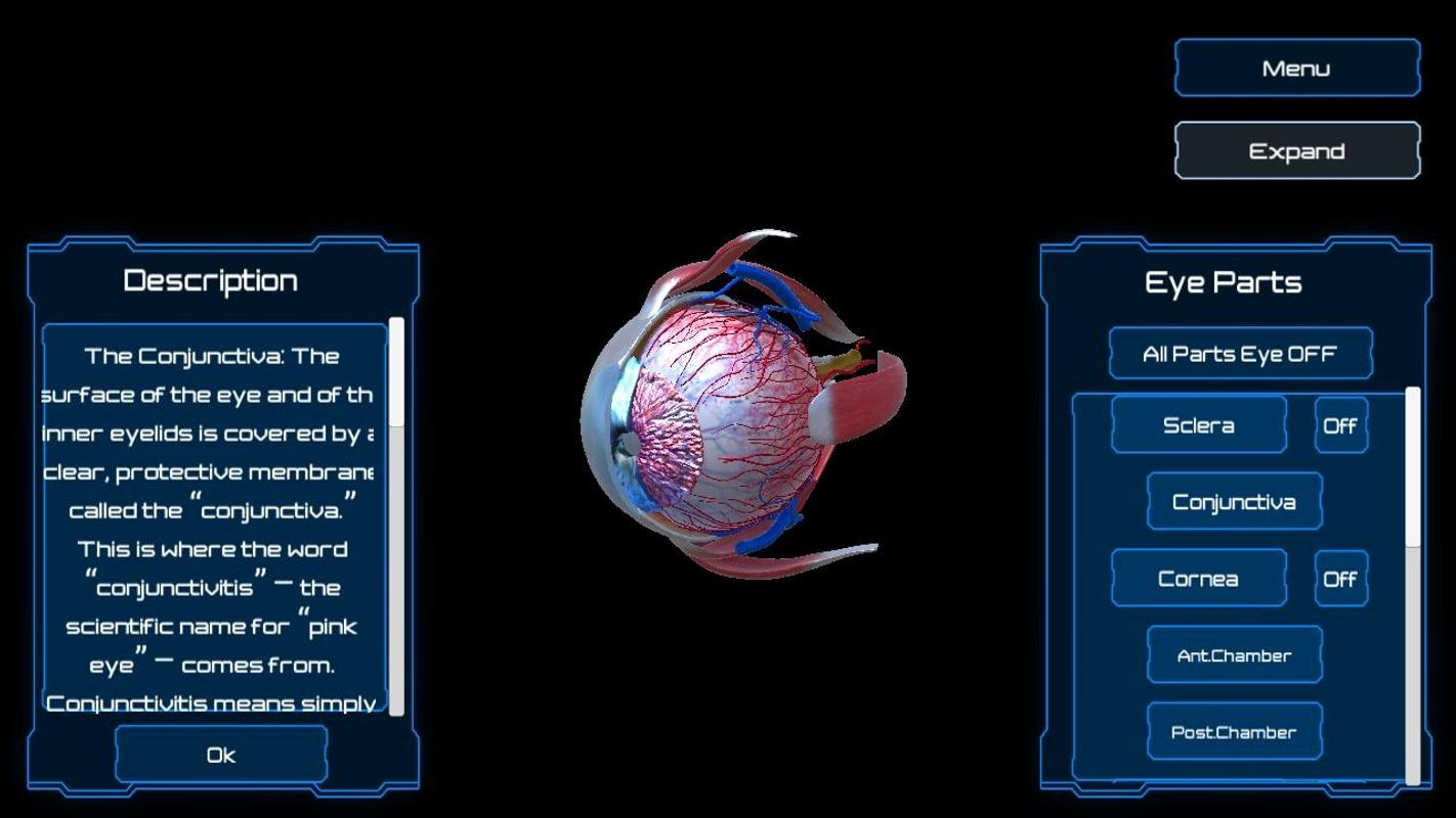 Anatomy Human Eye For Android Apk Download