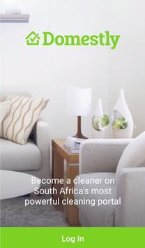 DomestlyCleaner poster