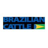 Brazilian Cattle icon