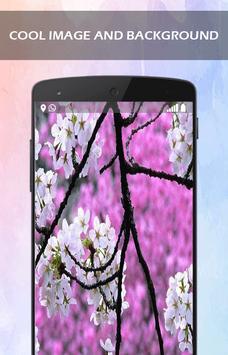 Aroma Sakura Flower wallpaper screenshot 1