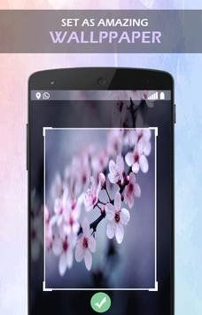 Aroma Sakura Flower wallpaper screenshot 2