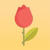 꽃길 (꽃 도매 가격 비교) icon