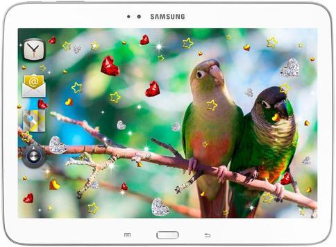 Birds Love live wallpaper poster