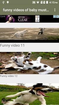 Funny Videos of Baby screenshot 2