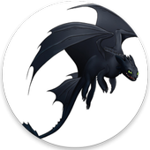 Dragon Rider icon