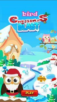 Chrismast Bird Blast poster