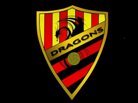 BCN DRAGONS F.C screenshot 1