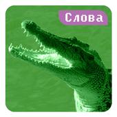 Крокодил icon