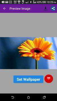 Awesome Flowers Wallpapers screenshot 1
