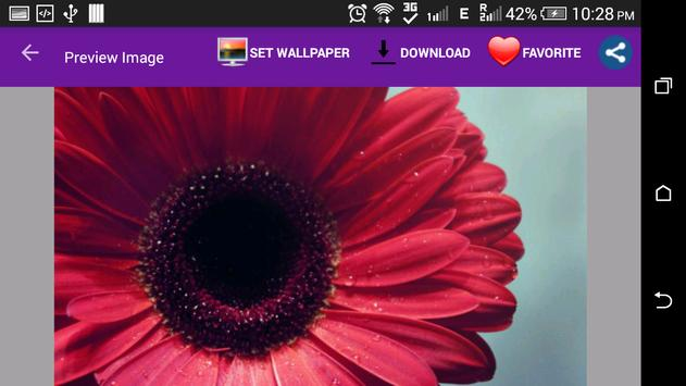 Awesome Flowers Wallpapers screenshot 5
