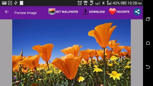 Awesome Flowers Wallpapers screenshot 6