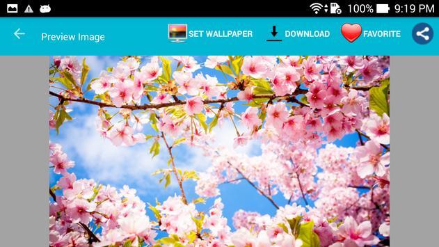 Best HD Wallpapers apk screenshot