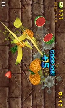 Fruit Slice captura de pantalla 7