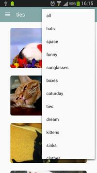World Of Cats screenshot 2
