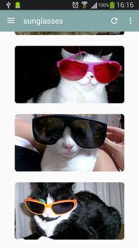 World Of Cats screenshot 3