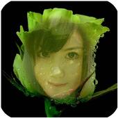 Beautiful Rose Flower Frame icon