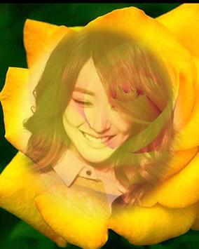 yellow rose flower frame poster