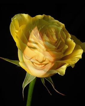 yellow rose flower frame apk screenshot