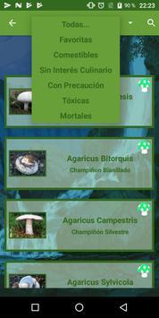 Info Setas screenshot 15
