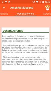 Info Setas screenshot 11