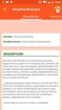 Info Setas screenshot 3