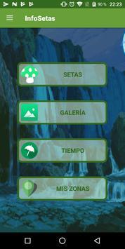Info Setas screenshot 7