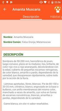 Info Setas screenshot 9