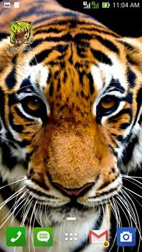 Tiger Wallpaper poster