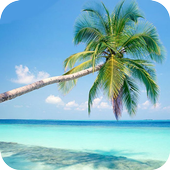 Beach wallpaper icon