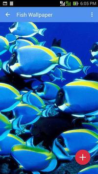 Fish Wallpaper apk screenshot