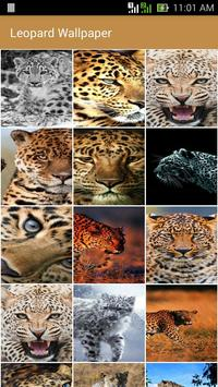 Leopard wallpaper poster