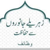 Zahreelay Janawaron Say Hifazat Wazaif icon