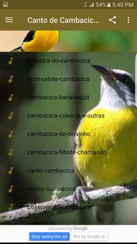 Canto de Cambacica Tui Tui poster